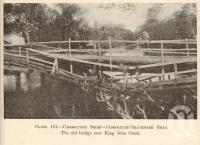 "<span class=""caption-caption"">Caboolture Shire</span>. <br />From <span class=""caption-book"">Queensland Agricultural Journal</span>, 1933, collection of <span class=""caption-contributor"">Fryer Library, UQ</span>."