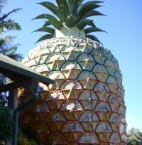 "<span class=""caption-caption"">Big Pineapple</span>, 2009. <br />Digital image, collection of <span class=""caption-contributor"">Centre for the Government of Queensland MS</span>."