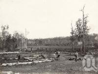 "<span class=""caption-caption"">Selector's farm Maroochydore River</span>, date unknown. <br />Photograph, collection of <span class=""caption-contributor"">Mobsby Collection, Fryer Library, UQ</span>."