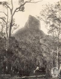 "<span class=""caption-caption"">Glass House Mountain</span>, date unknown. <br />Photograph, collection of <span class=""caption-contributor"">Mobsby Collection, Fryer Library, UQ</span>."