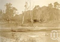 "<span class=""caption-caption"">Cattle Creek, Finch Hatton</span>, 1900-1915. <br />Photograph, collection of <span class=""caption-contributor"">JC Smith Collection, Fryer Library, UQ</span>."