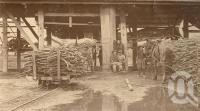 "<span class=""caption-caption"">The carriers at the sugar mill, Mossman</span>, 1900-1915. <br />Photograph, collection of <span class=""caption-contributor"">JC Smith Collection, Fryer Library, UQ</span>."
