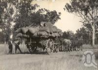 "<span class=""caption-caption"">Load of cotton, 48 cwt, to Wowan</span>, 1921-1922. <br />Photograph, collection of <span class=""caption-contributor"">Gillies Collection, Fryer Library, UQ</span>."
