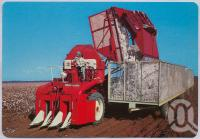 """<span class=""""caption-caption"""">Cotton Centre of Queensland, Dawson - Callide Valley</span>, c1970-2000. <br />Postcard, collection of <span class=""""caption-contributor"""">Murray Views Collection</span>."""