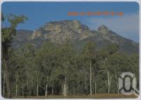 """<span class=""""caption-caption"""">Mt Walsh, Biggenden</span>, c1970-2000. <br />Postcard, collection of <span class=""""caption-contributor"""">Murray Views Collection</span>."""