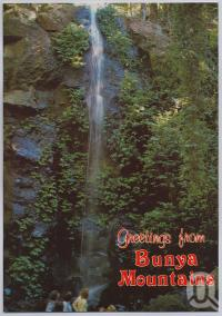 "<span class=""caption-caption"">Festoon Falls, Saddletree Creek, Bunya Mountsins</span>, c1970-2000. <br />Postcard, collection of <span class=""caption-contributor"">Murray Views Collection</span>."