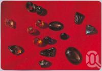 "<span class=""caption-caption"">A Collection of Gems, Sapphire Fields</span>, c1970-2000. <br />Postcard, collection of <span class=""caption-contributor"">Murray Views Collection</span>."