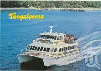 "<span class=""caption-caption"">Tangalooma Island Resort, Moreton Island</span>, c1970-2000. <br />Postcard, collection of <span class=""caption-contributor"">Murray Views Collection</span>."
