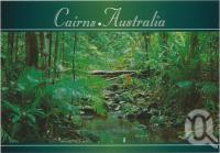 "<span class=""caption-caption"">Tropical Rainforest, Cairns</span>, c1970-2000. <br />Postcard, collection of <span class=""caption-contributor"">Murray Views Collection</span>."