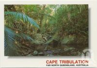 "<span class=""caption-caption"">A peaceful stream makes its way through the green foliage of the Cape Tribulation rainforest</span>, c1970-2000. <br />Postcard, collection of <span class=""caption-contributor"">Murray Views Collection</span>."