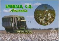 "<span class=""caption-caption"">Cotton harvesting in the Emerald District</span>, c1970-2000. <br />Postcard, collection of <span class=""caption-contributor"">Murray Views Collection</span>."