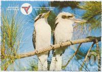"<span class=""caption-caption"">Brisbane, Host City Commonwealth Games 1982, Kookaburras</span>, c1970-2000. <br />Postcard, collection of <span class=""caption-contributor"">Murray Views Collection</span>."