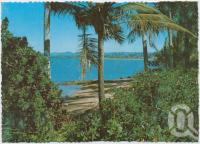 "<span class=""caption-caption"">Tropical, picturesque beach, North Queensland</span>, c1970-2000. <br />Postcard, collection of <span class=""caption-contributor"">Murray Views Collection</span>."