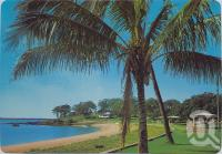 "<span class=""caption-caption"">Coconut palms, Barney Point Beach, Gladstone</span>, c1970-2000. <br />Postcard, collection of <span class=""caption-contributor"">Murray Views Collection</span>."