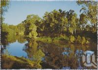 "<span class=""caption-caption"">Reflections on the McIntyre River, Goondiwindi</span>, c1970-2000. <br />Postcard, collection of <span class=""caption-contributor"">Murray Views Collection</span>."
