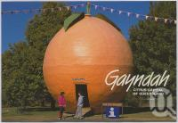 "<span class=""caption-caption"">The Big Orange, Gayndah</span>, c1970-2000. <br />Postcard, collection of <span class=""caption-contributor"">Murray Views Collection</span>."