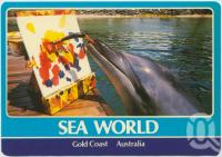 """<span class=""""caption-caption"""">Leia one of Sea World's Bottlenosed Dolphins produces another masterpiece</span>, c1970-2000. <br />Postcard, collection of <span class=""""caption-contributor"""">Murray Views Collection</span>."""