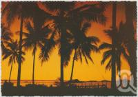 "<span class=""caption-caption"">Sunset through the coconut palms, Hayman Island</span>, c1970-2000. <br />Postcard, collection of <span class=""caption-contributor"">Murray Views Collection</span>."