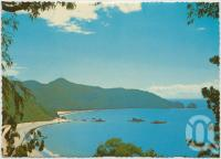 "<span class=""caption-caption"">Hibiscus Coast, beaches at Cape Hillsborough Tourist Resort and National Park, via Mackay</span>, c1970-2000. <br />Postcard, collection of <span class=""caption-contributor"">Murray Views Collection</span>."