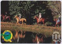"<span class=""caption-caption"">Cedar Lake Country Club, Numinbah Valley Road, Advancetown, via Nerang</span>, c1970-2000. <br />Postcard, collection of <span class=""caption-contributor"">Murray Views Collection</span>."
