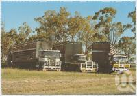 "<span class=""caption-caption"">Andrews Livestock Transport, Jandowae</span>, c1970-2000. <br />Postcard, collection of <span class=""caption-contributor"">Murray Views Collection</span>."