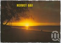 "<span class=""caption-caption"">Evening approaches as the fisherman tries his luck at the water's edge, Hervey Bay</span>, c1970-2000. <br />Postcard, collection of <span class=""caption-contributor"">Murray Views Collection</span>."