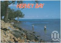 "<span class=""caption-caption"">Fishing at Hervey Bay, a favourite pastime</span>, c1970-2000. <br />Postcard, collection of <span class=""caption-contributor"">Murray Views Collection</span>."