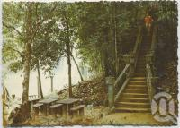 """<span class=""""caption-caption"""">The forty-seven steps to the lower garden and pool, Paronella Park</span>, c1970-2000. <br />Postcard, collection of <span class=""""caption-contributor"""">Murray Views Collection</span>."""