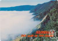 """<span class=""""caption-caption"""">The Pioneer Valley showing a blanket of cloud, this unusual phenomenon occurs rarely through the winter months in this tropical mountain paradise, Eungella</span>, c1970-2000. <br />Postcard, collection of <span class=""""caption-contributor"""">Murray Views Collection</span>."""