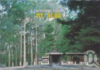 "<span class=""caption-caption"">Boobana National Park picnic area in rain forest, Mt Nebo</span>, c1970-2000. <br />Postcard, collection of <span class=""caption-contributor"">Murray Views Collection</span>."