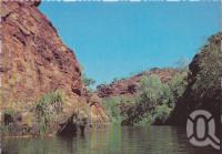"<span class=""caption-caption"">he Gorge, Lawn Hill Creek, Lawn Hill National Park, Gulf of Carpentaria</span>, c1970-2000. <br />Postcard, collection of <span class=""caption-contributor"">Murray Views Collection</span>."