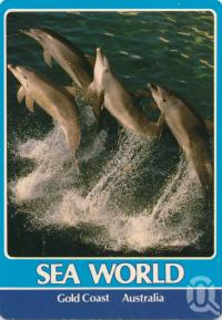 """<span class=""""caption-caption"""">Sea World, Gold Coast</span>, 1988. <br />Postcard by <span class=""""caption-publisher"""">Murray Views Pty Ltd</span>, collection of <span class=""""caption-contributor"""">Centre for the Government of Queensland</span>."""