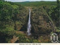 """<span class=""""caption-caption"""">Wallaman Falls</span>, c1966. <br />Postcard folder by <span class=""""caption-publisher"""">GK Bolton</span>, collection of <span class=""""caption-contributor"""">Centre for the Government of Queensland MS</span>."""