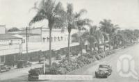 """<span class=""""caption-caption"""">Main street, Atherton</span>, c1945. <br />Postcard folder by <span class=""""caption-publisher"""">Murray Views Pty Ltd</span>, collection of <span class=""""caption-contributor"""">Centre for the Government of Queensland</span>."""