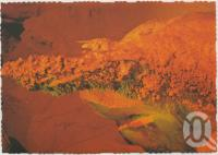 """<span class=""""caption-caption"""">Helictite (Cave Coral), Cammoo Caves</span>, c1970-2000. <br />Postcard, collection of <span class=""""caption-contributor"""">Murray Views Collection</span>."""