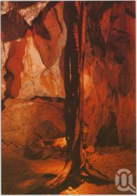 """<span class=""""caption-caption"""">Cammoo Caves</span>, c1970-2000. <br />Postcard, collection of <span class=""""caption-contributor"""">Murray Views Collection</span>."""