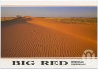 "<span class=""caption-caption"">Birdsville Big Red</span>, c1970-2000. <br />Postcard, collection of <span class=""caption-contributor"">Murray Views Collection</span>."