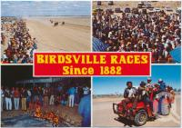 "<span class=""caption-caption"">Birdsville Races, since 1882</span>, c1970-2000. <br />Postcard, collection of <span class=""caption-contributor"">Murray Views Collection</span>."