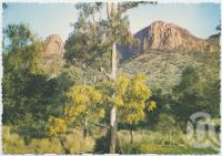 "<span class=""caption-caption"">Virgin Rock, Springsure</span>, c1970-2000. <br />Postcard, collection of <span class=""caption-contributor"">Murray Views Collection</span>."