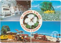 "<span class=""caption-caption"">Cotton Industry, St George Irrigation Area</span>, c1970-2000. <br />Postcard, collection of <span class=""caption-contributor"">Murray Views Collection</span>."