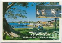 "<span class=""caption-caption"">Tewantin, Noosa River</span>, c1970-2000. <br />Postcard, collection of <span class=""caption-contributor"">Murray Views Collection</span>."