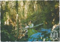 """<span class=""""caption-caption"""">The Grotto, Rainforest Tourist Park, High Tor, Maleny</span>, c1970-2000. <br />Postcard, collection of <span class=""""caption-contributor"""">Murray Views Collection</span>."""