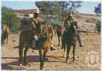 "<span class=""caption-caption"">Aboriginal stockmen, near Birdsville</span>, c1970-2000. <br />Postcard, collection of <span class=""caption-contributor"">Murray Views Collection</span>."