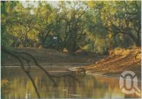 "<span class=""caption-caption"">Combo Waterhole inspired AB ""Banjo"" Paterson to write ""Waltzing Matilda"" in 1895, Winton</span>, c1970-2000. <br />Postcard, collection of <span class=""caption-contributor"">Murray Views Collection</span>."